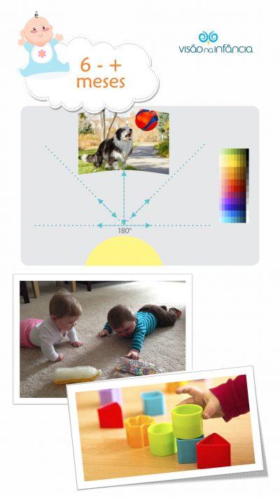 infográfico com principais marcos do desenvolvimento visual e alertas a partir dos 6 meses
